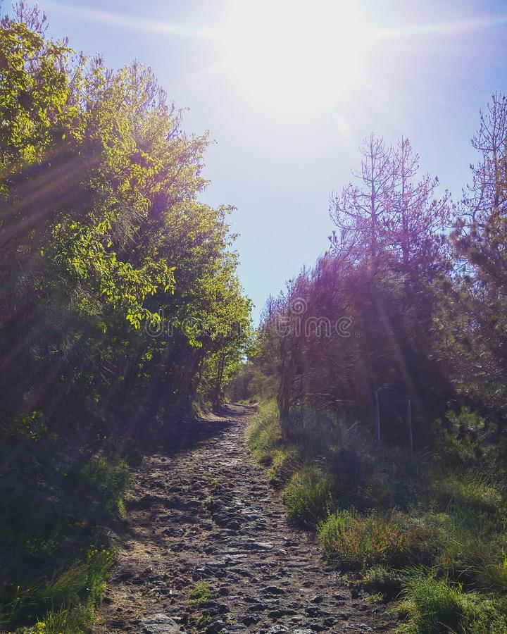 Позвольте солнцу посветить на вашем пути стоковые фотографии rf