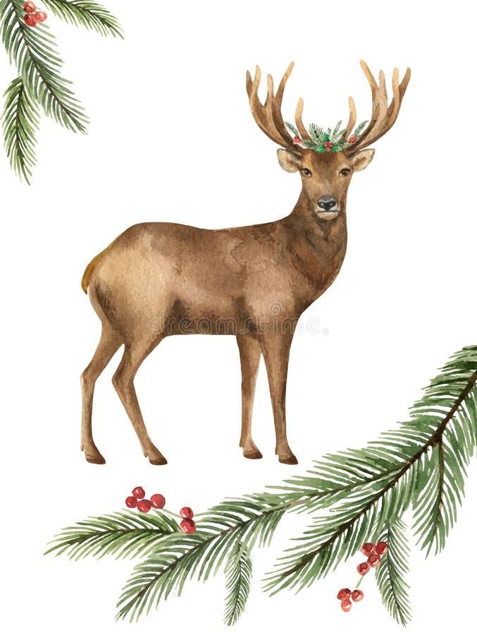 Поздравительная открытка вектора акварели с оленями рождества и зеленой елевой ветвью иллюстрация вектора