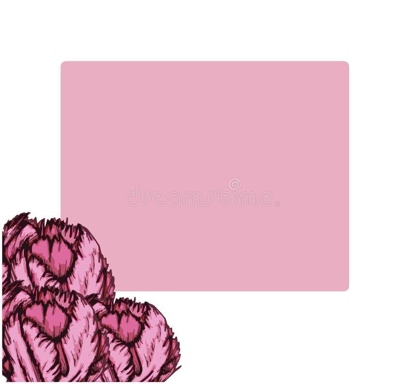 Поздравительная открытка тюльпана пурпурная 3 части иллюстрация вектора