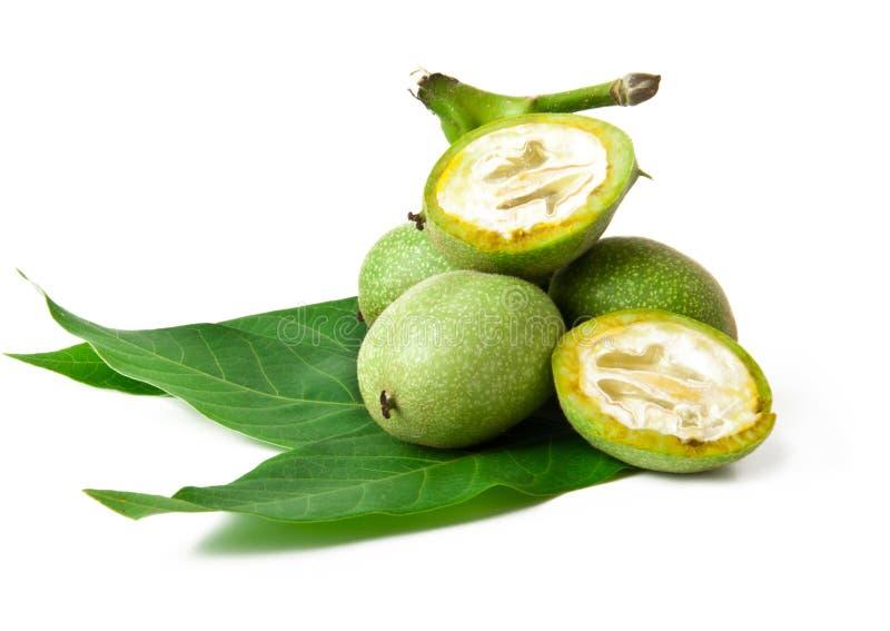 позеленейте грецкий орех стоковая фотография rf