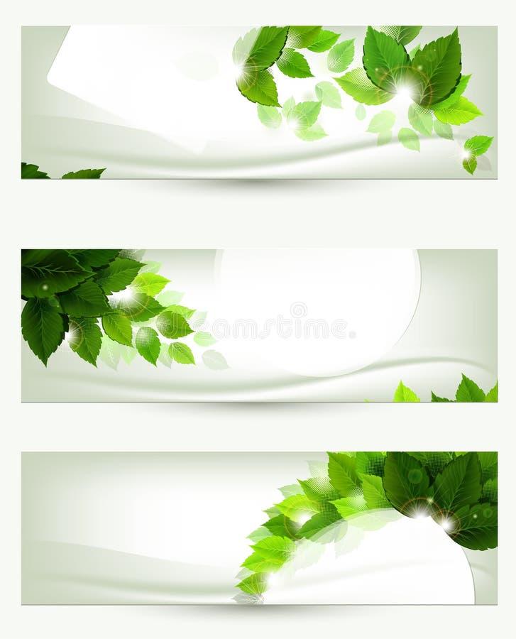 позеленейте листья иллюстрация вектора