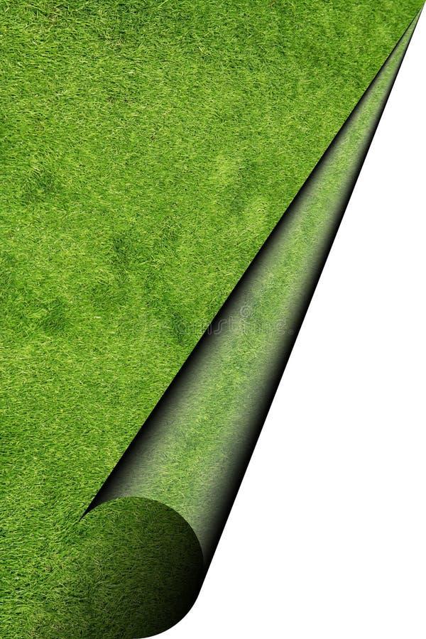 позеленейте лист бесплатная иллюстрация