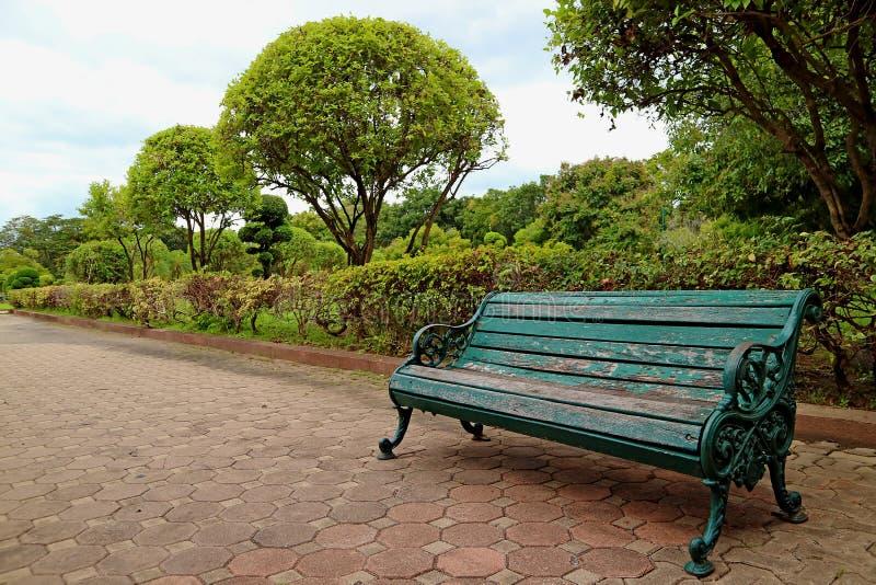 Позеленейте покрашенный деревянный и чугунный стенд на саде тропы публично стоковая фотография rf