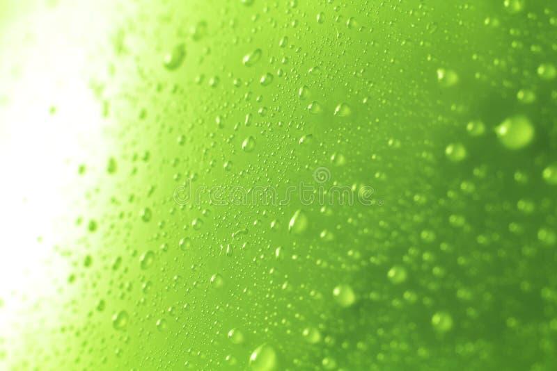 Позеленейте падения воды стоковое фото rf