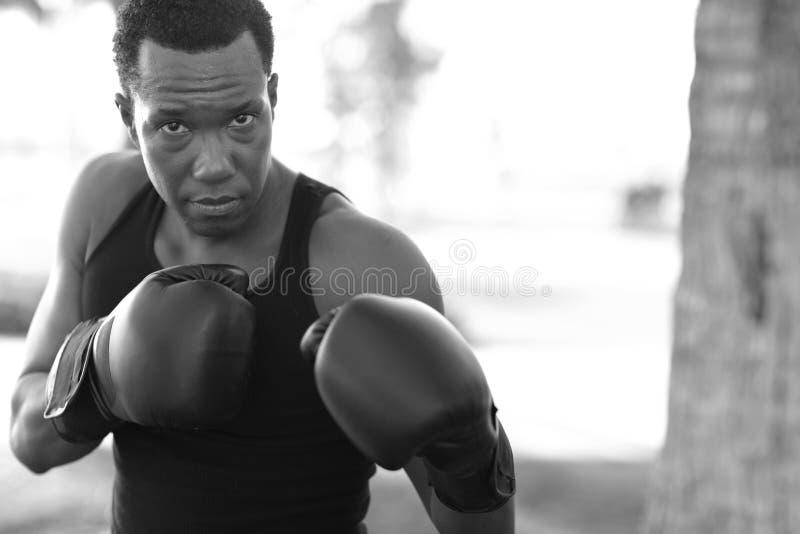 позиция человека бокса стоковое фото