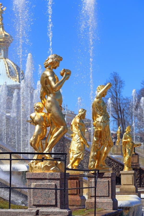 Позолоченные скульптуры большого каскада с Bacchus и сатира на переднем плане в Peterhof стоковое фото rf