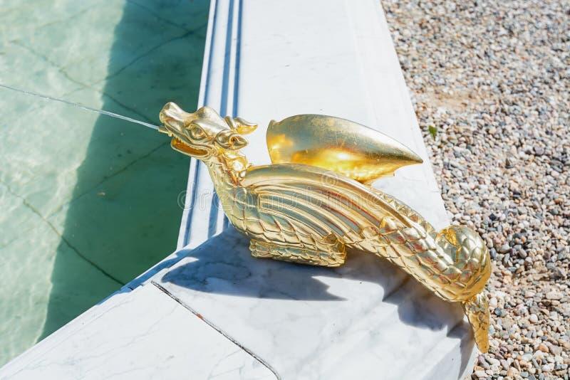 Позолоченный дракон плевания воды как украшение фонтана стоковые изображения rf