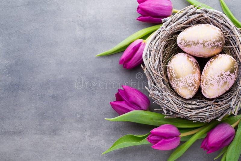 Поздравительная открытка весны Пасхальные яйца в весне гнезда цветут tu стоковое изображение rf