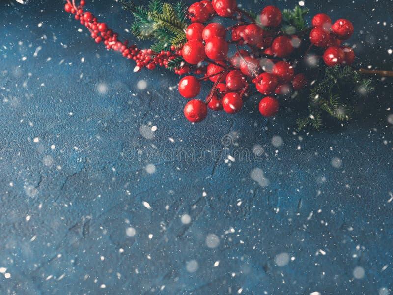 Поздравительная открытка падения снега ветви рождества красная стоковое изображение