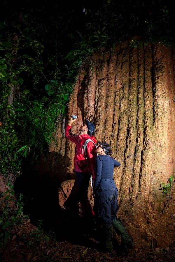 Поиск пар путешественника и исследует через тропический лес стоковые изображения rf