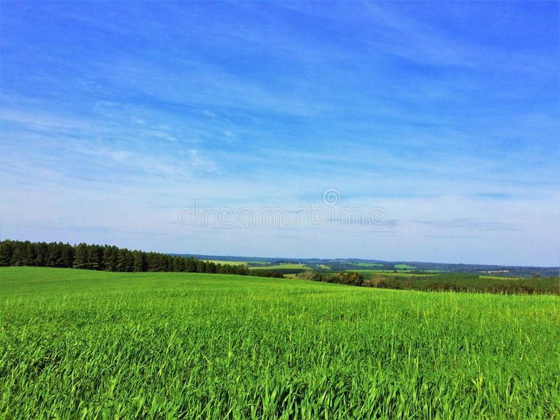 Поистине ландшафт как тема Windows XP стоковые изображения rf