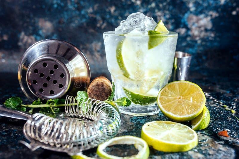 Поймайте тонический спиртной коктеиль в западню с льдом и мятой Пить коктеиля служили на ресторане, пабе или баре стоковое изображение rf