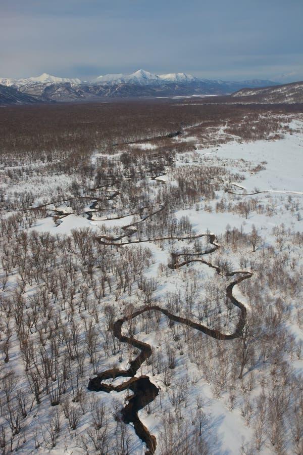 Пойма реки извивается в тундре горы снежной стоковое фото rf