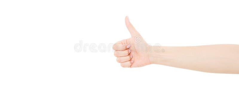 Показ руки женщины как изолированный на белой предпосылке стоковая фотография