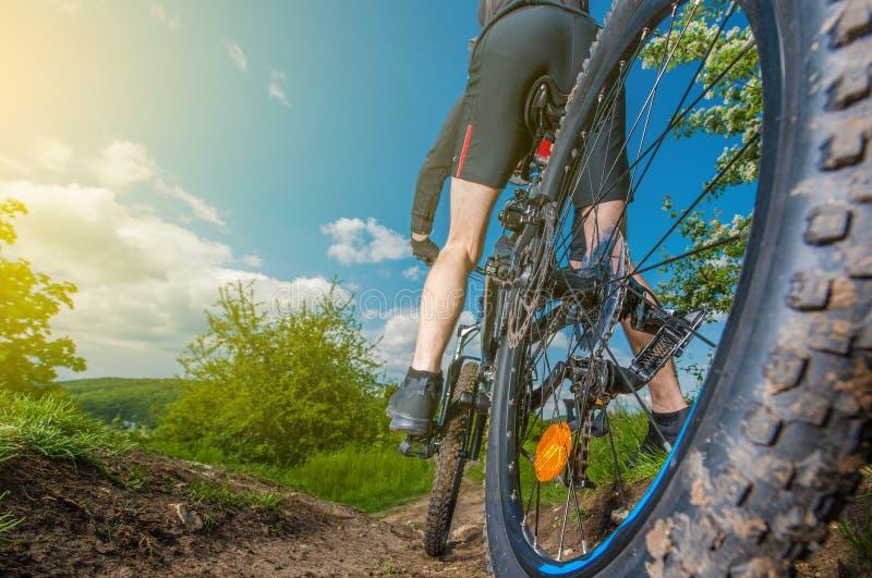 Покатая езда горного велосипеда стоковые фотографии rf