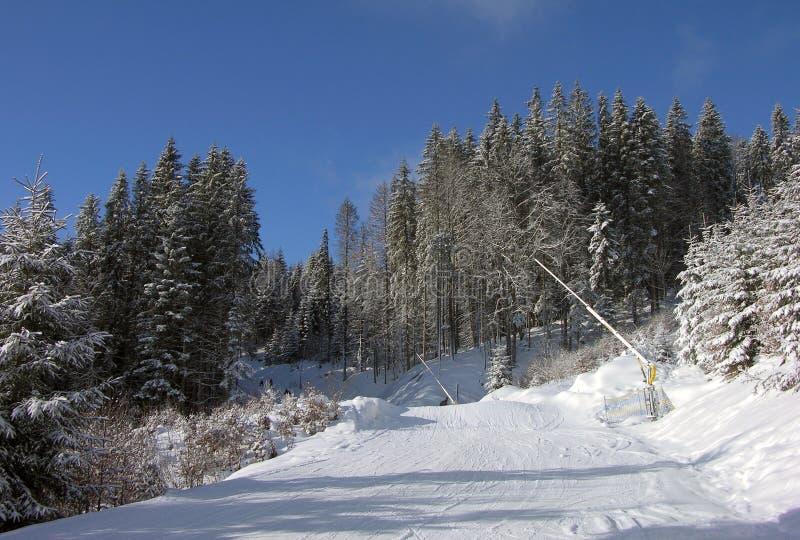 покатое катание на лыжах стоковое фото rf