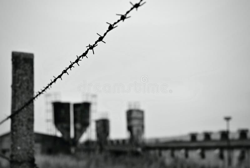 Покинутая фабрика с колючей проволокой стоковые фотографии rf