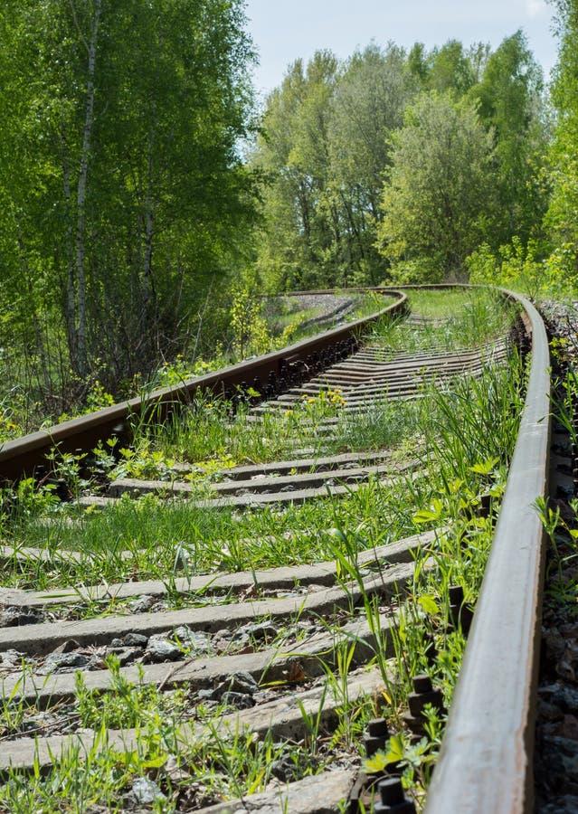 Покинутое железнодорожное перерастанное с травой и замоткой среди деревьев стоковые изображения rf