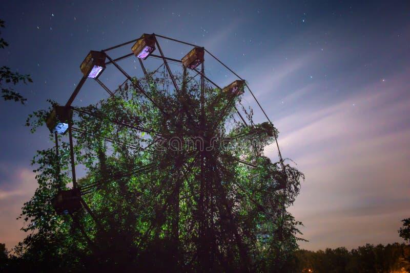 покинутое колесо ferris стоковые фотографии rf