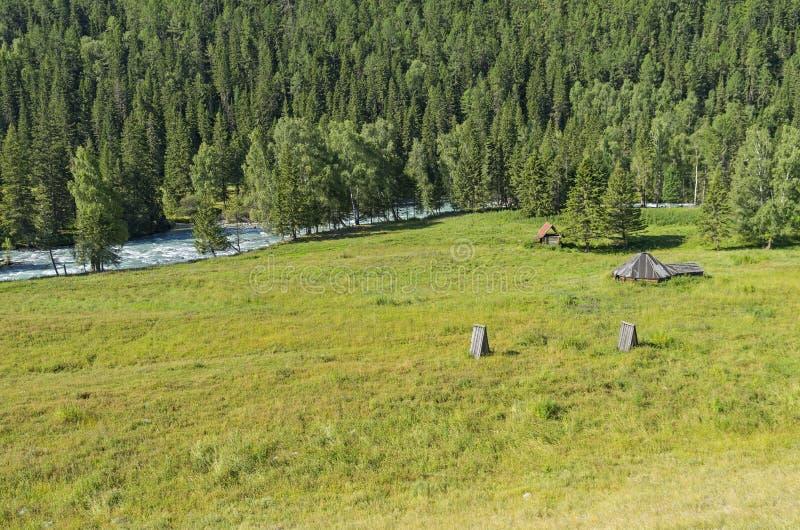 Покинутое скотин-ранчо на береге реки Горы Altai, Россия стоковое изображение