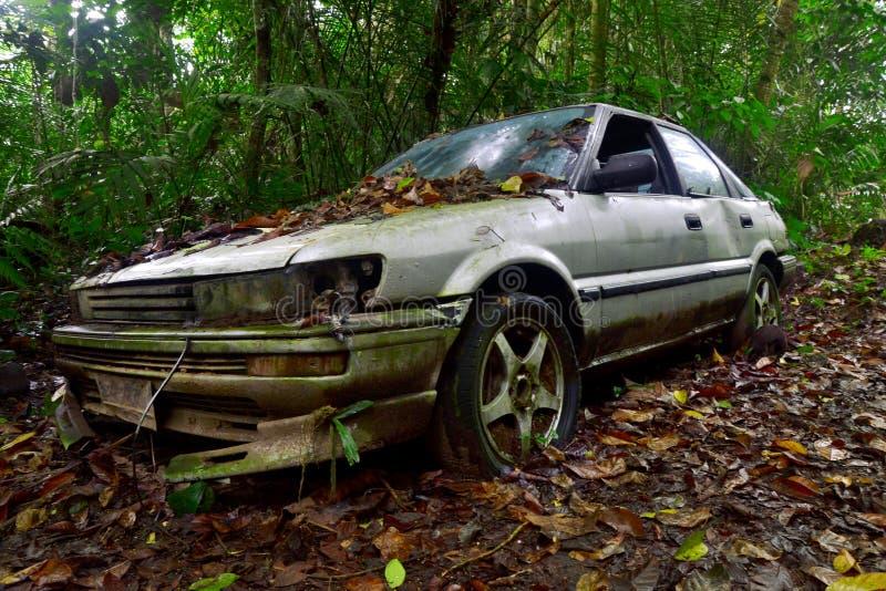 Покинутый автомобиль в середине джунглей стоковые изображения rf