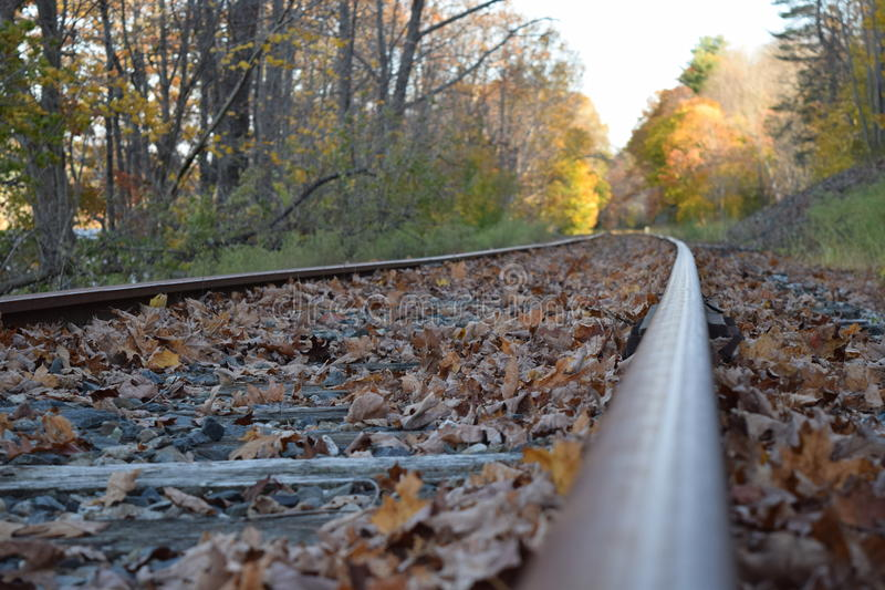 Покинутый железнодорожный путь в падении стоковая фотография
