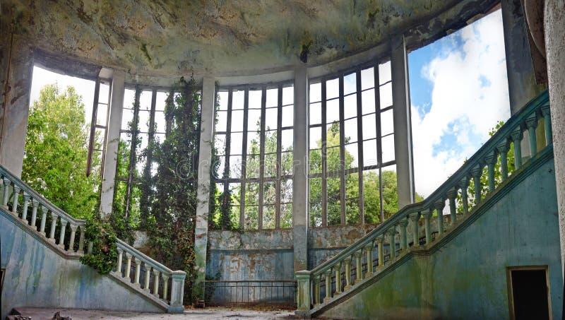 Покинутый и перерастанный интерьер старого особняка стоковые фото