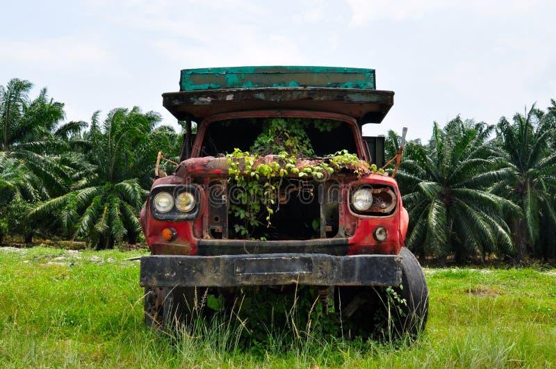 Покинутый перерастанный грузовик стоковое фото rf