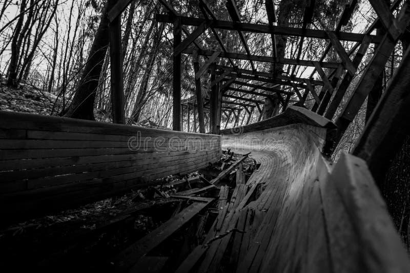 Покинутый след санного спорта snakes он путь ` s через лес стоковое фото