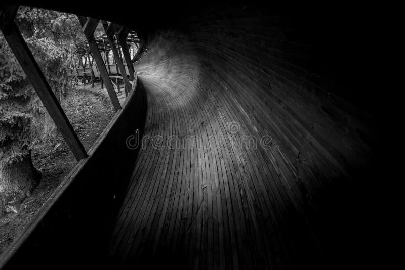 Покинутый след санного спорта snakes он путь ` s через лес стоковая фотография