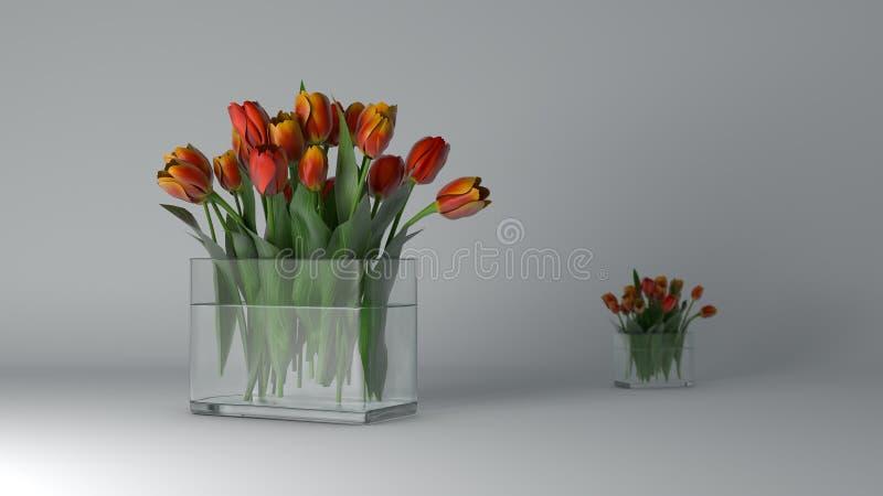 покрасьте желтый цвет тюльпана красной весны fuschia цветков большой стоковое фото rf