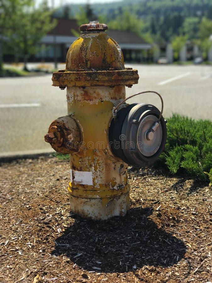 Покрасьте жидкостный огнетушитель шелушения стоковое фото