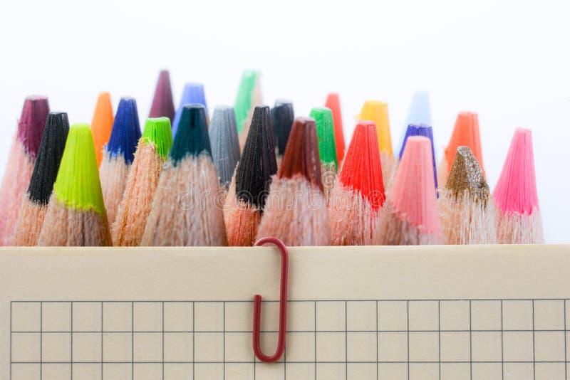 Покрасьте карандаши различного цвета на белой предпосылке стоковое фото