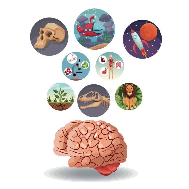 Покрасьте круговые значки с развитием мира изображения внутрь с вышеуказанным мозгом бесплатная иллюстрация