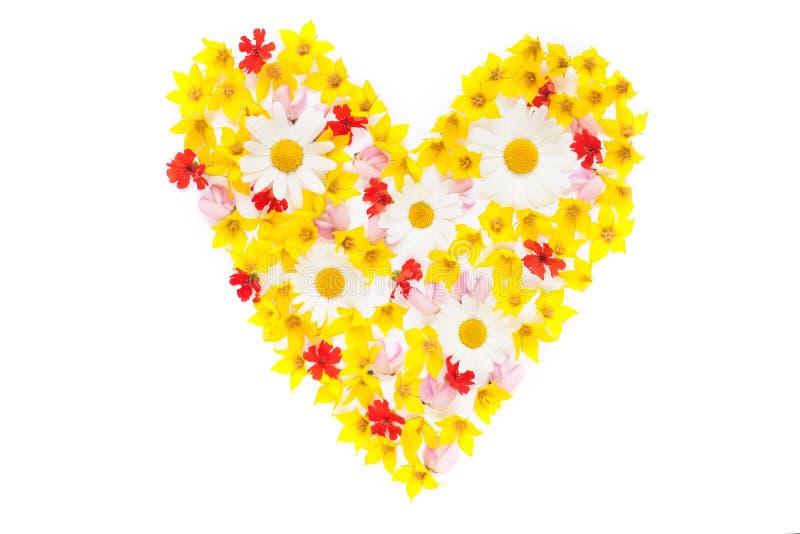 Покрасьте положение квартиры сердца цветков сада стоковое изображение