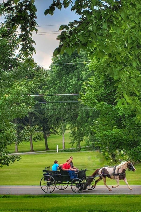 Покрасьте привод лета лошади и багги мимо стоковое изображение