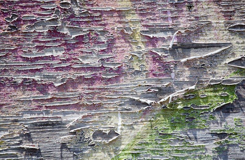 покрасьте шелушение стоковые изображения rf