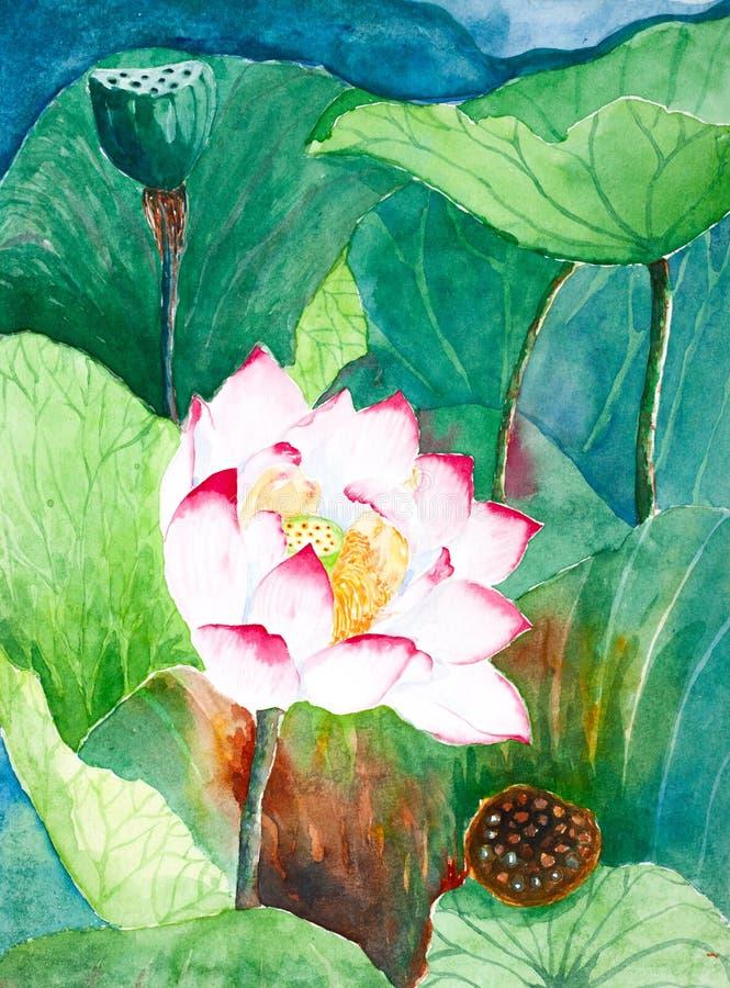 Покрашенная акварель цветка лотоса иллюстрация штока