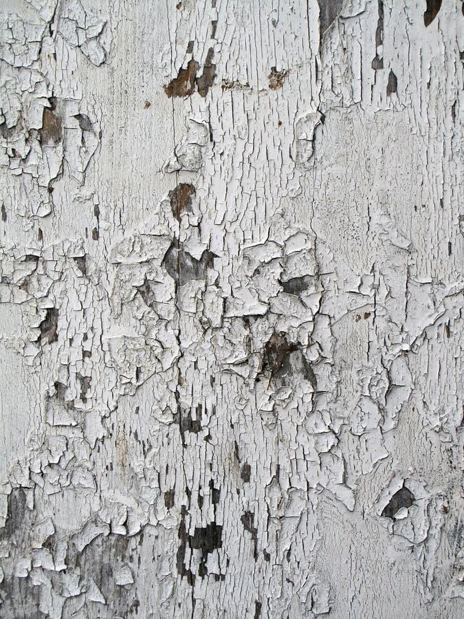 Покрашенная белизна Grunge деревянной стоковая фотография rf