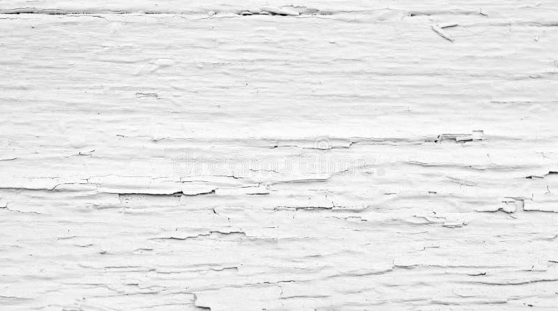 Покрашенная грубая деревянная предпосылка, белый старый фон стоковое изображение rf