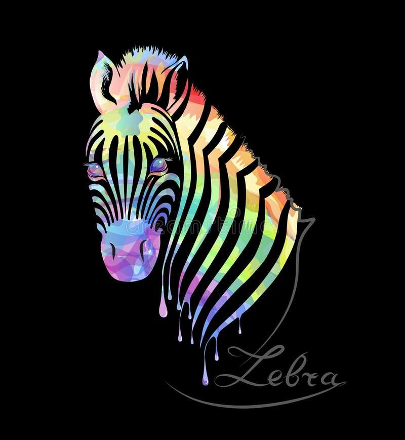 Покрашенная зебра на черноте иллюстрация штока