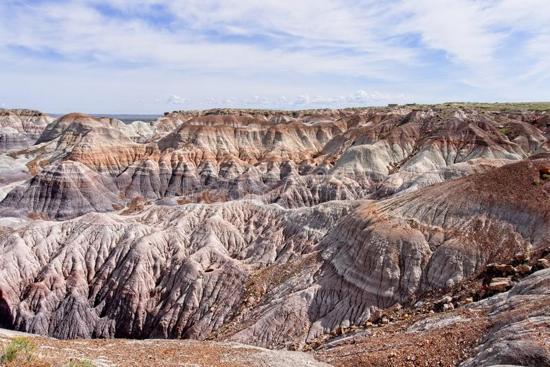 Покрашенная пустыня расположенная в национальном парке окаменелого леса стоковые изображения