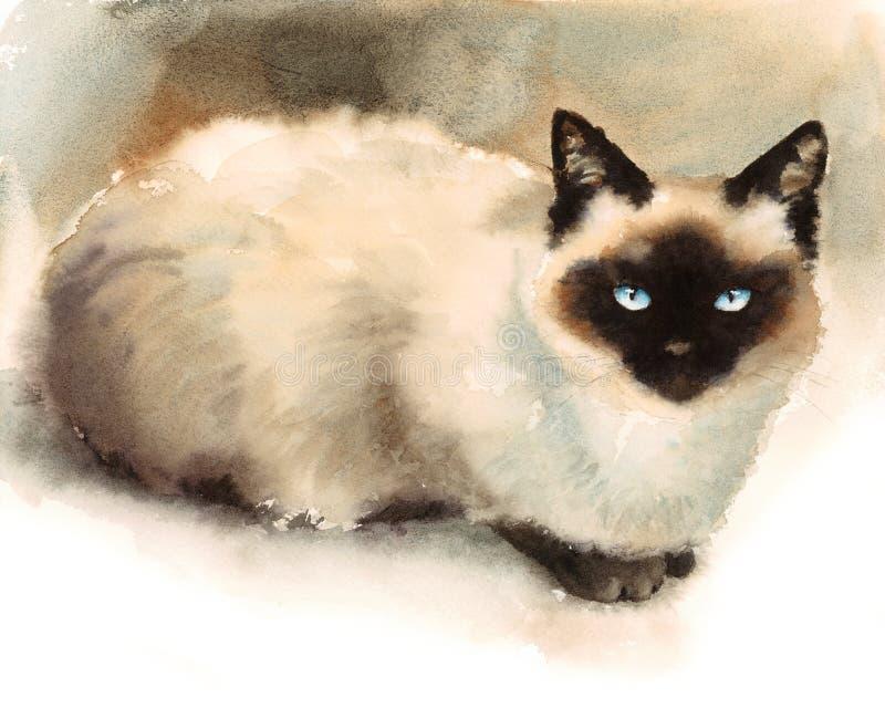 Покрашенная рука иллюстрации любимчиков животных акварели сиамского кота иллюстрация вектора