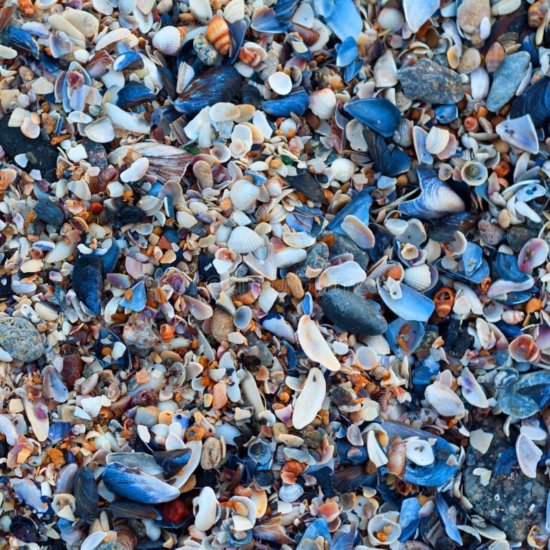 Download Покрашенная текстура предпосылки конспекта Grunge Стоковое Фото - изображение насчитывающей пусто, грязно: 37927558