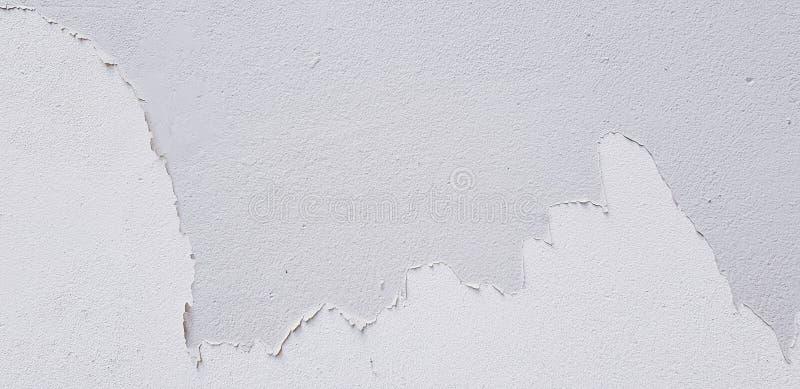 Покрашенное белое треснуло на серой стене цемента для предпосылки с космосом экземпляра стоковые изображения