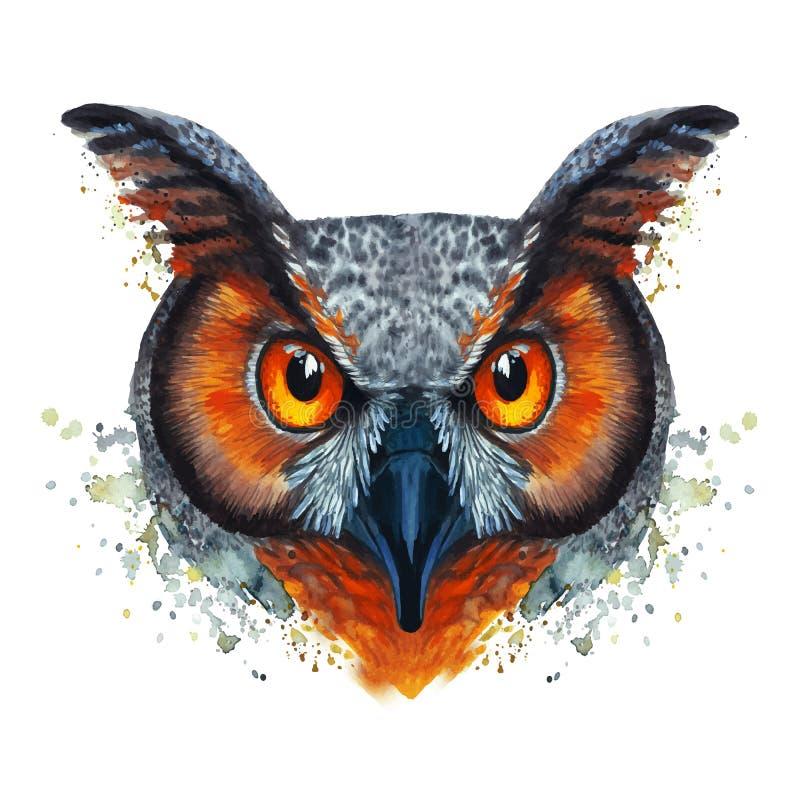 Покрашенное изображение акварели голодной птицы сыча ночи на белой предпосылке с красным апельсином наблюдает с яркими цветами иллюстрация вектора