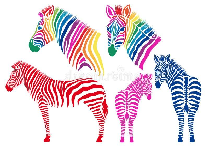 Покрашенные зебры, комплект вектора бесплатная иллюстрация