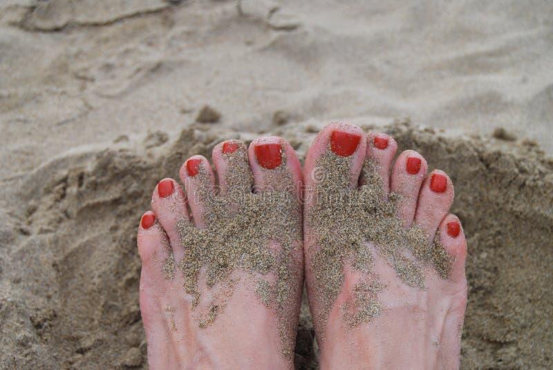 Покрашенные пальцы ноги в песчаном пляже стоковое фото rf