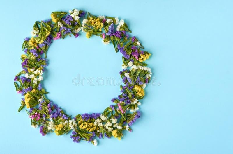 Покрашенные цветки на голубом составе предпосылки, форме круга r стоковая фотография rf