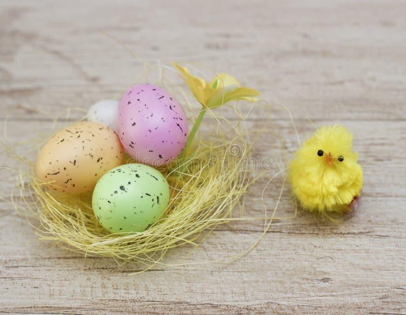 Покрашенные яичка в гнезде с цыпленком на древесине стоковое изображение